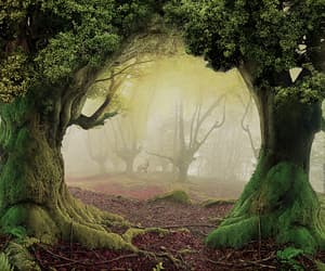 fantasy, forest, and green image
