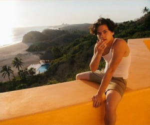 boys, ♡, and cole sprouse image