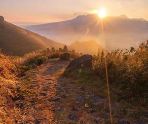 japan, nature, and sunrise image