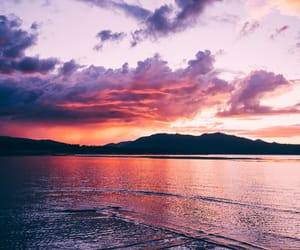 beach, tropical, and tumblr image