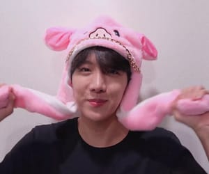 aesthetic, bts, and pig image