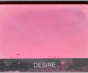 desire, pallet, and eyeshadow image