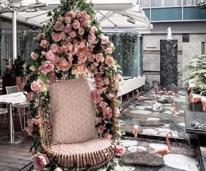 chair, decor, and flower image