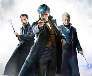 albus dumbledore, jude law, and eddie redmayne image