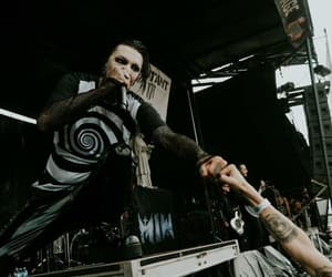 concert, creature, and motionless in white image