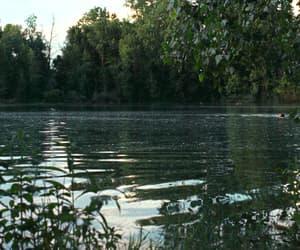 gif, nature, and lake image