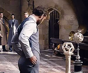 albus dumbledore, gif, and jude law image