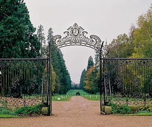 nature, gate, and gates image
