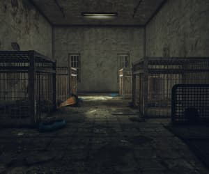 asylum, dim, and cages image