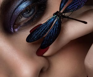 art, butterfly, and create image