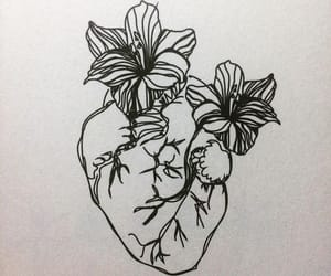 flowers, heart, and art image