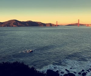 aesthetic, travel, and california image
