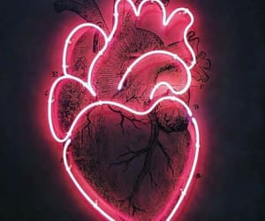 heart, neon, and pink image