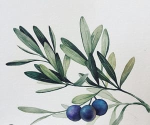 art, beauty, and berries image