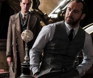 albus dumbledore, jude law, and fantastic beasts image