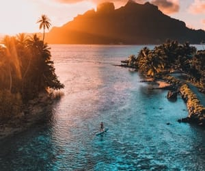 ocean, sunset, and life image