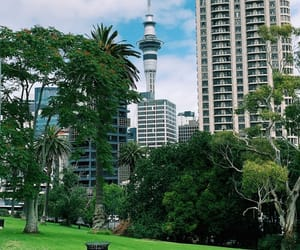 auckland, center, and new zealand image