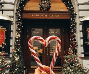 christmas, lviv, and winter image