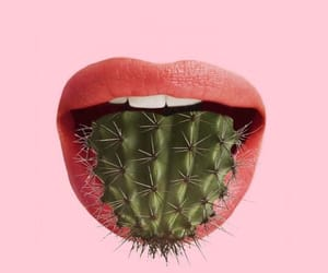 lips, pink, and cactus image