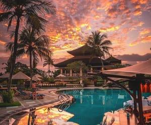 travel, sunset, and palms image