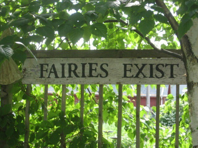 fairy, nature, and garden image