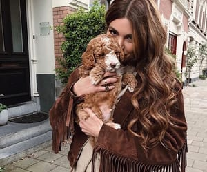 puppy, dog, and negin mirsalehi image