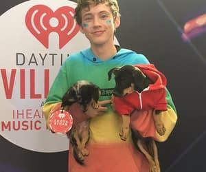 dogs, hoodie, and rainbow image