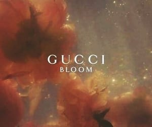 gucci, flowers, and bloom image