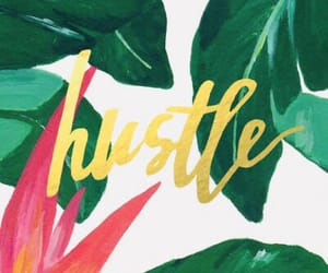 background, hustle, and tropical image