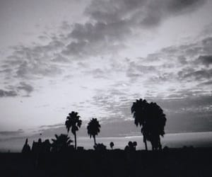 black, trees, and grier image