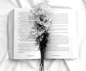 book, flower, and aesthetic image