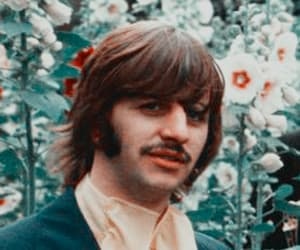 ringo and the beatles image