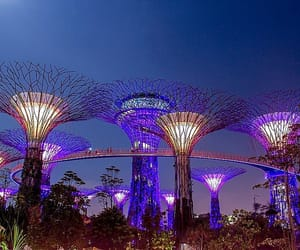 singapore, marina bay sands, and gardens by the bay image