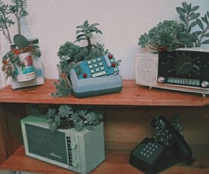 plants, vintage, and grunge image