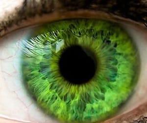 eye, green eye, and green image