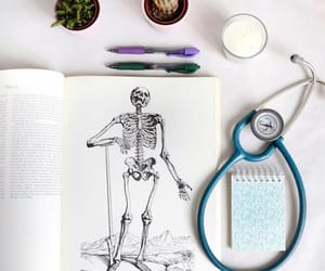 books, tea, and med student image