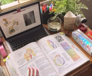 notes, motivation, and study image
