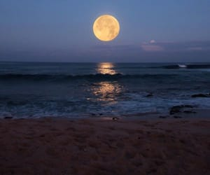 moon, sea, and nature image