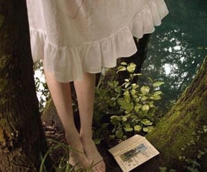book, dress, and forest image