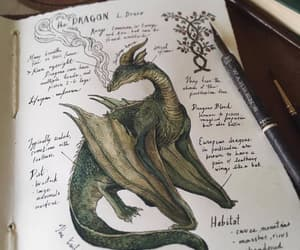 dragon, art, and drawing image
