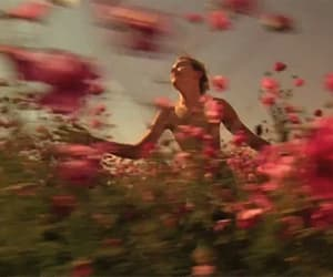 camp, run away, and flowers image
