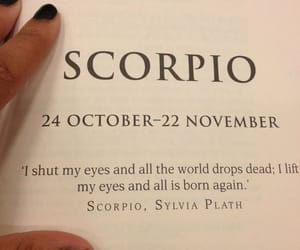 scorpio, words, and zodiac image