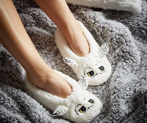 harry potter, hedwig, and slippers image