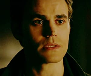 gif, stefan, and the vampire diaries image