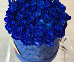 blue, red flower, and we heart it image