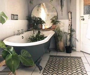 bathroom, plants, and decor image