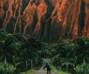 green, hawaii, and paradise image