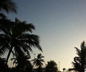beach, sol, and @aliensaay image