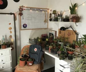 plants, room, and alternative image