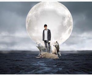 edit, wolves, and fanedit image